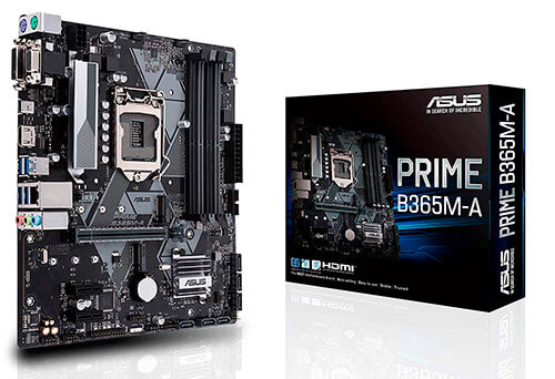 Placa base ASUS Prime B365M-A