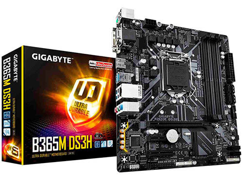 Placa base Gigabyte B365M-DS3H